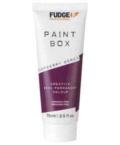 Paint Box Creative Semi Permanent Hair Colour Raspberry Beret