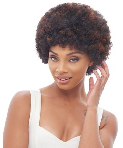 Janet HH Afro Wig